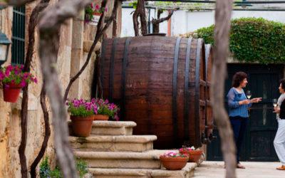 El impacto económico del enoturismo en las Rutas del Vino de España supera los 85 millones de euros solo en visitas a bodegas y museos