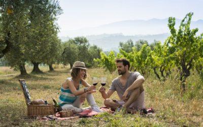El gasto y la estancia media de los enoturistas vuelve a aumentar en las Rutas del Vino de España