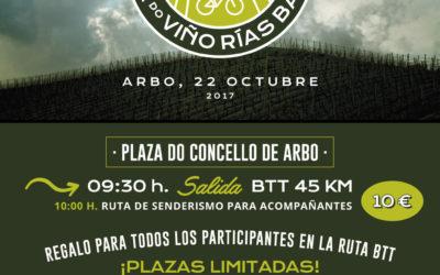 La II BTT Ruta do Viño Rías Baixas espera congregar a 250 amantes del cicloturismo