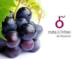 Propuestas de otoño de la Ruta del Vino de Navarra