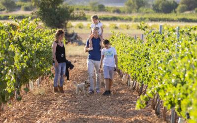 Rutas del Vino de España invita a sus seguidores en redes sociales a participar en la Quiniela #PremiosDeEnoturismoRVE