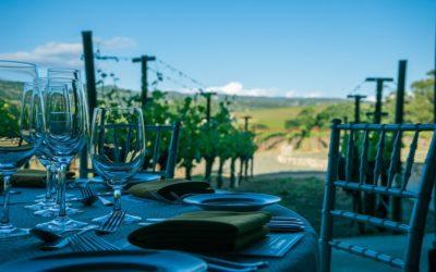 Rutas del vino y gastronomía, una alianza irresistible