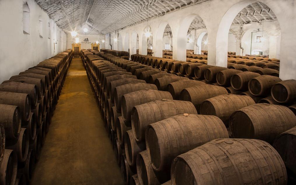 La economía creativa en las Rutas del Vino de España