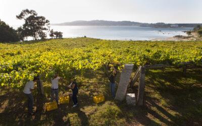4 Rutas del Vino de España al lado del mar